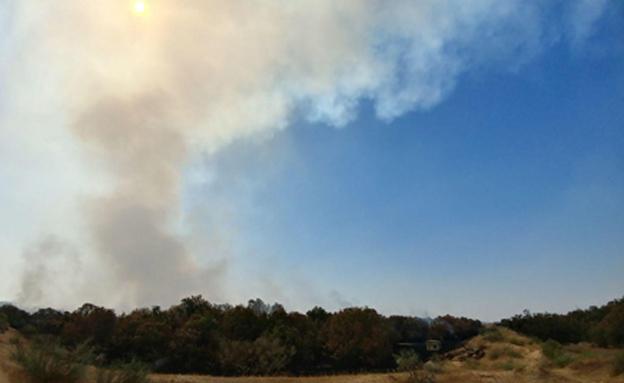 השריפה באזור אשדוד (המשרד להגנת הסביבה)